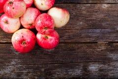 Rode rijpe appelen Stock Foto's