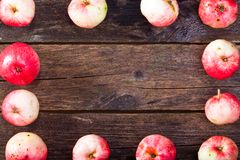 Rode rijpe appelen Royalty-vrije Stock Foto