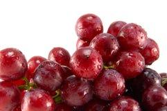Rode rijpe druif Royalty-vrije Stock Afbeeldingen
