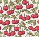 Rode rijpe kers, geïsoleerde boom Gravure, tekening freehand flora Uitstekende vector realistische illustratie Naadloze achtergro stock illustratie