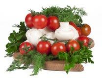 Rode rijpe tomaten met paddestoelen Royalty-vrije Stock Fotografie