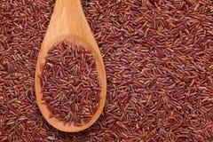 Rode rijst in een houten lepel stock afbeeldingen