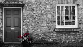 Rode Rose House Color Splash stock foto