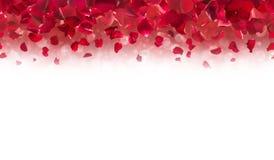Rode Rose Petals Top Border Royalty-vrije Stock Fotografie