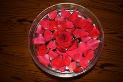 Rode Rosepetals in Water gevulde Kom stock foto