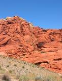 Rode rots Stock Fotografie