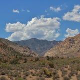 Rode Rotscanion, Nevada, de V.S. Stock Afbeeldingen