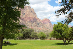 Rode rotsen en groen in de woestijn royalty-vrije stock fotografie