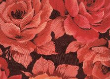 Rode rozen. Stock Foto's
