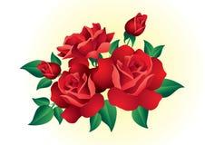 Rode rozen. Stock Afbeeldingen