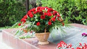 Rode rozen Royalty-vrije Stock Fotografie