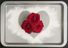 Rode rozen die met liefde bakken Royalty-vrije Stock Foto