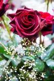 Rode rozen en andere bloemen Royalty-vrije Stock Afbeeldingen