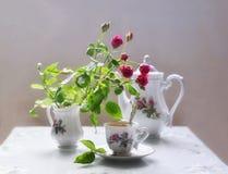Rode rozen en een Kop van koffie Stock Foto's
