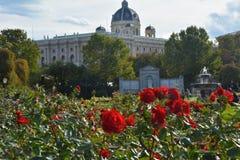 Rode rozen in het eerste plan en het Museum van Fijne Kunst op de achtergrond in Wenen Stock Foto's