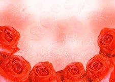 Rode rozen met bloemblaadjes royalty-vrije stock foto