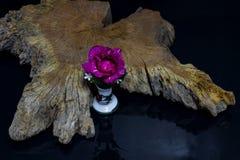 Rode rozen met oud hout Royalty-vrije Stock Afbeelding