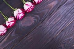 Rode rozen met plaats voor tekst Stock Foto