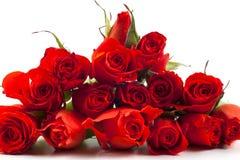Rode rozen op een witte achtergrond Stock Fotografie