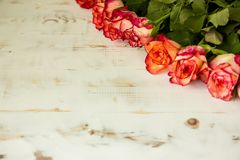 Rode rozen op houten achtergrond royalty-vrije stock foto