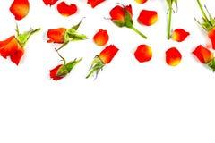 Rode rozen op houten raad, de achtergrond van de Valentijnskaartendag Stock Foto