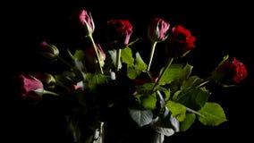 Rode rozen in vaas stock video