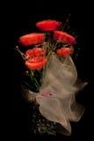 Rode rozen voor u Royalty-vrije Stock Afbeeldingen