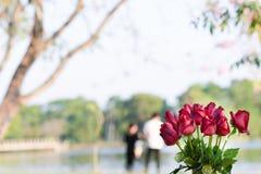 Rode rozenachtergrond met paren Royalty-vrije Stock Fotografie