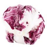 Rode saladeradicchio op wit stock afbeeldingen