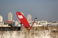Rode satelliet. Stock Foto