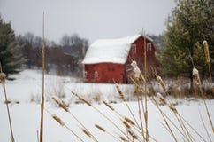 Rode Schuur in de Winter Stock Foto