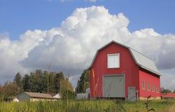 Rode Schuur en Cumuluswolken stock afbeelding