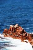 Rode sedimentaire overzeese klip, miniatuurstijl Royalty-vrije Stock Foto