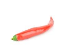 Rode Spaanse peper Stock Foto
