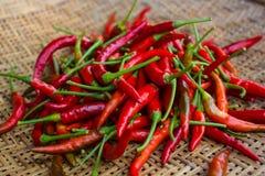 Rode Spaanse peper in mand Royalty-vrije Stock Afbeeldingen