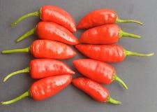 Rode Spaanse peper op goed decoratieve manier klaar voor het buigen stock foto's
