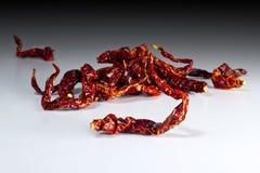 Rode Spaanse peperkromme Stock Foto