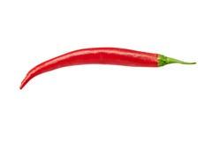 Rode Spaanse peperpaprika Stock Fotografie