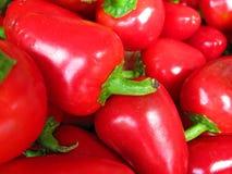 Rode Spaanse peperpeper stock afbeelding