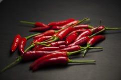 Rode Spaanse peperpeper Stock Foto