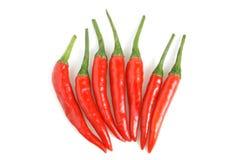 Rode Spaanse peperpeper Royalty-vrije Stock Fotografie