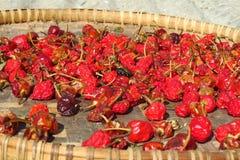 Rode Spaanse peperpeper die in de zon, de berggebied van Himalayagebergte, Nepal drogen royalty-vrije stock foto's