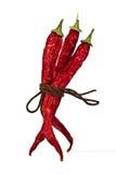 Rode Spaanse peperpeper die door kabel wordt gebonden Royalty-vrije Stock Fotografie