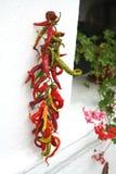 Rode Spaanse peperpeper die op te drogen kabel hangen Stock Foto's