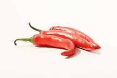 Rode Spaanse peperpeper, Thailand. Stock Fotografie