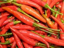 Rode Spaanse pepers 6 Stock Fotografie