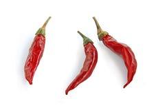 Rode Spaanse pepers. stock afbeeldingen