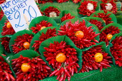Rode Spaanse pepers in brunch Royalty-vrije Stock Afbeelding