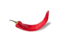 Rode Spaanse pepers hete peper Royalty-vrije Stock Fotografie