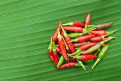 Rode Spaanse pepers op banaanblad stock foto
